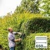 Bosch Heckenschere AdvancedHedgecut 65